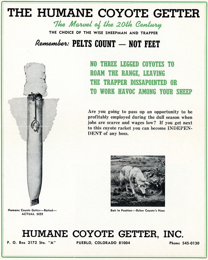 Advertisement for the Humane Coyote Getter