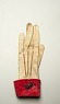 yellow kid leather glove (left side) from Anacostia Community Museum ... See More