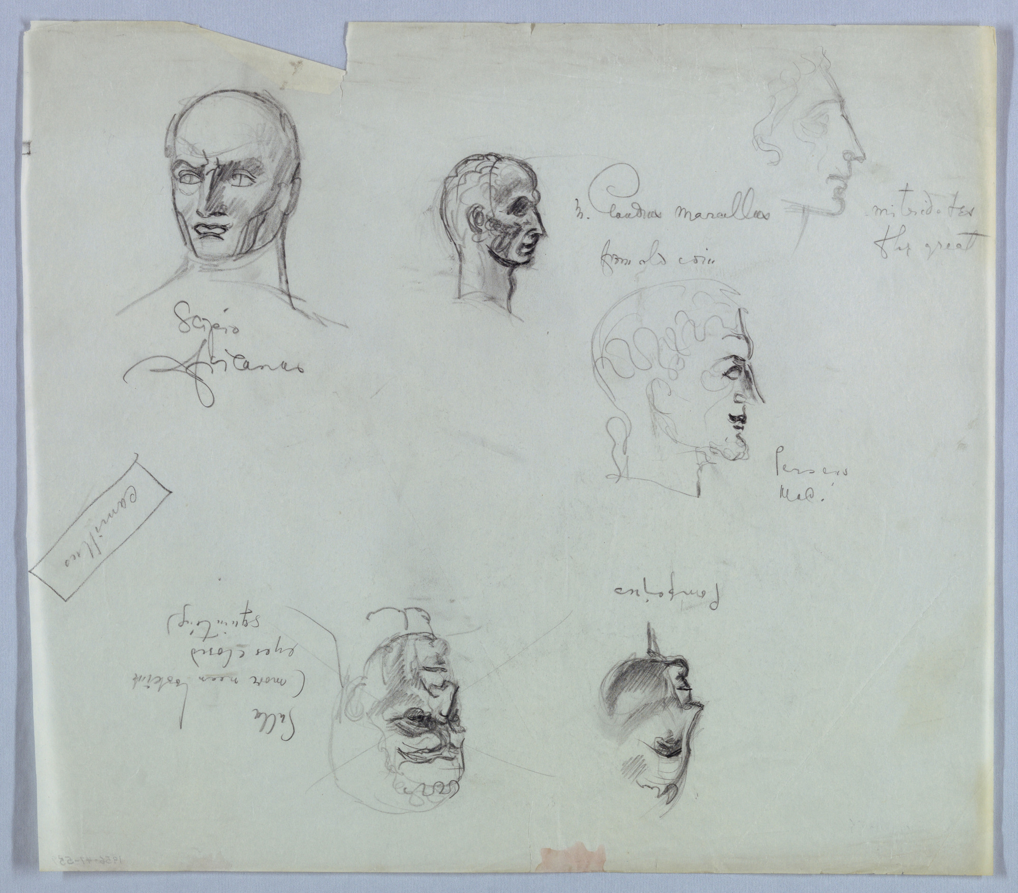 Six Male Heads in the Ancient Roman Style