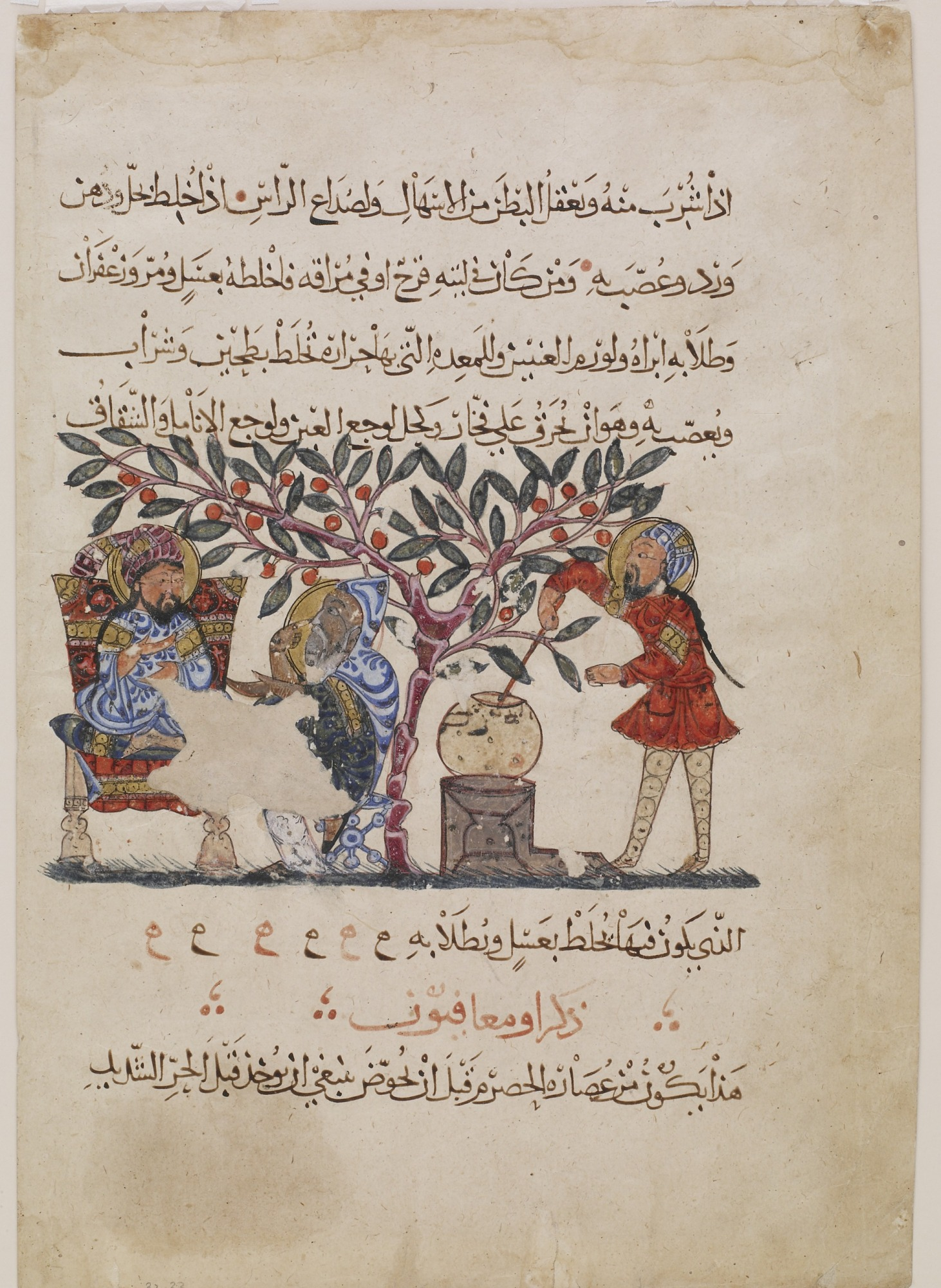 Folio from an Arabic translation of De materia medica by Dioscorides (ca. 40-90 C.E.); recto: text; verso: Preparation of medicine from the flower of the wild vine