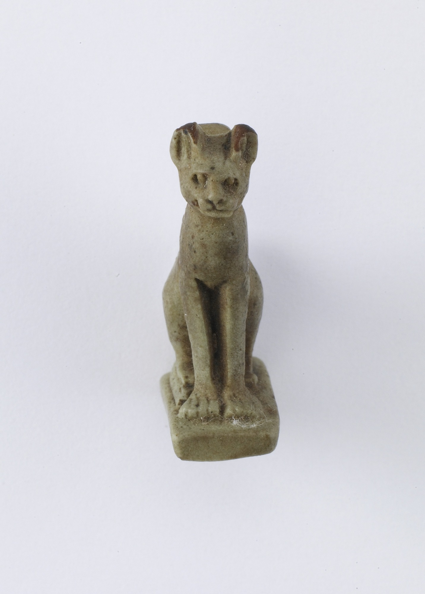 front: Seated cat