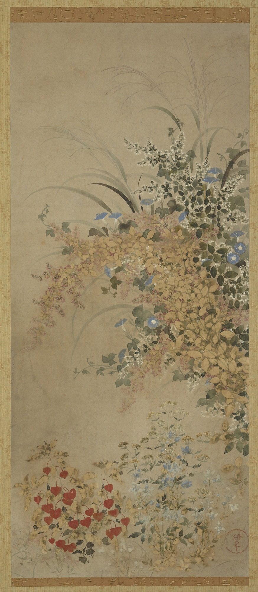 : Flowers and grasses