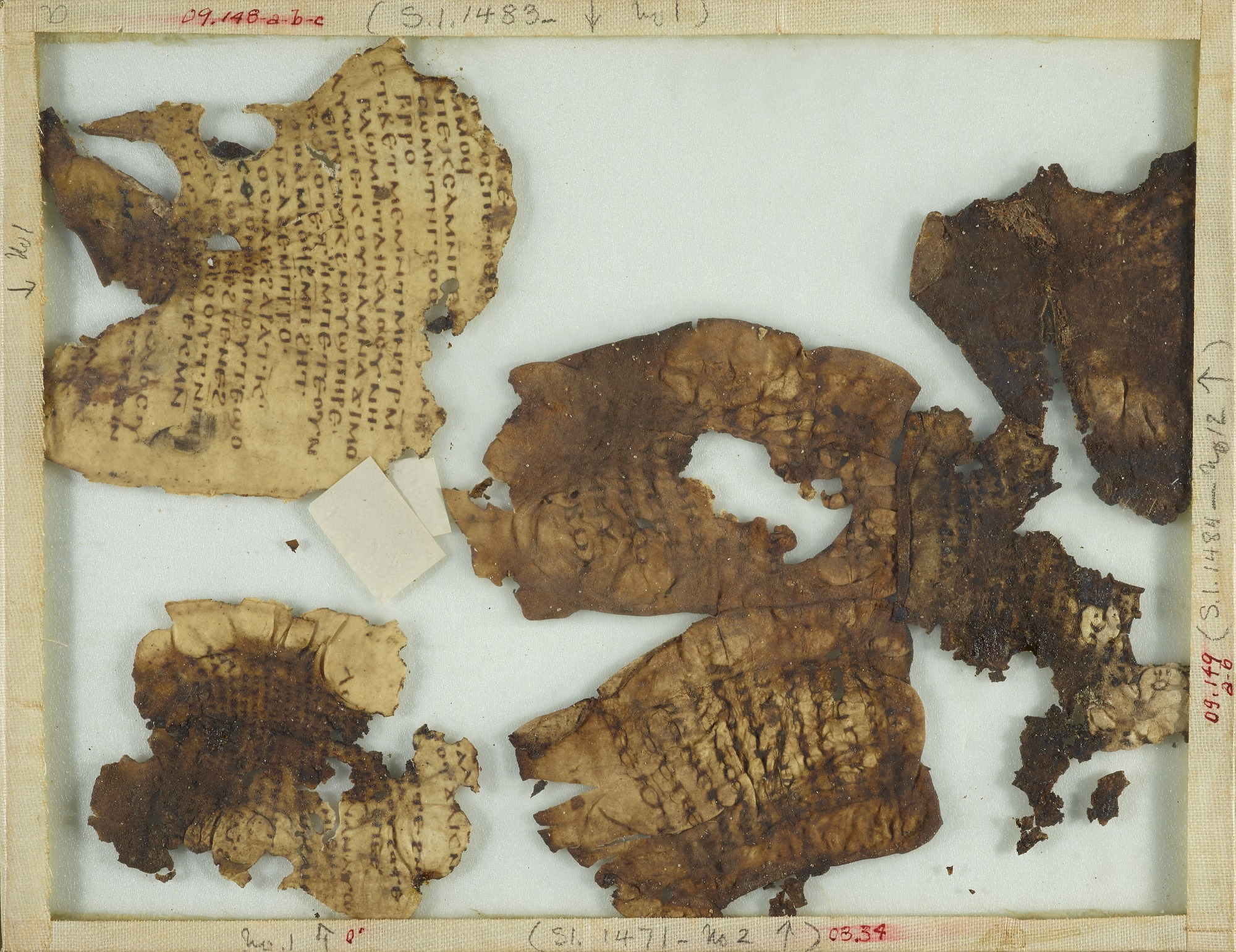Small portion of the Gospel of Matthew