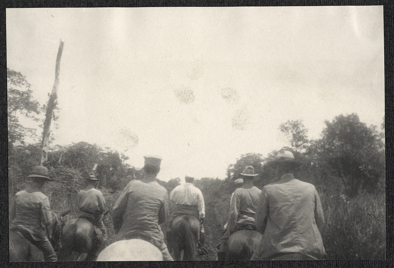 Mindanao: Army riders on the forest trail, William H. Taft near the lead