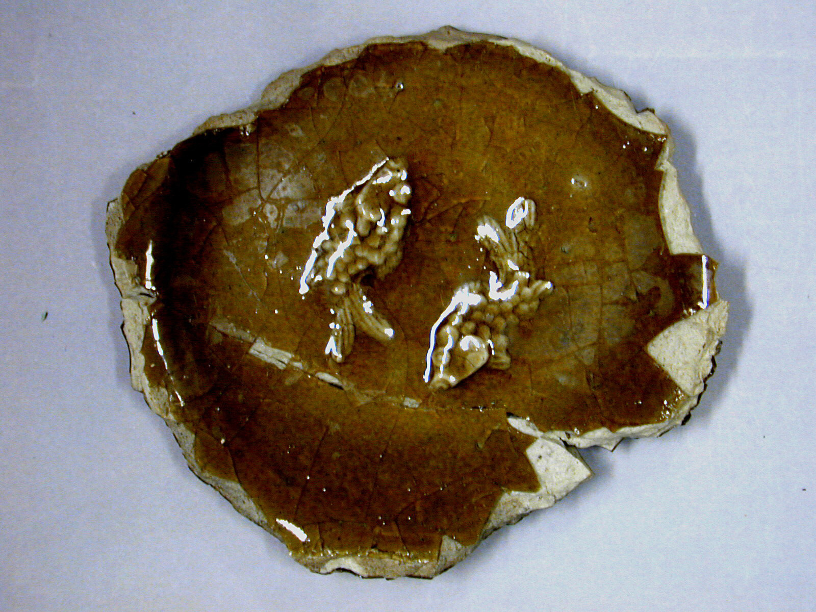 Fragment of dish with design of two fish