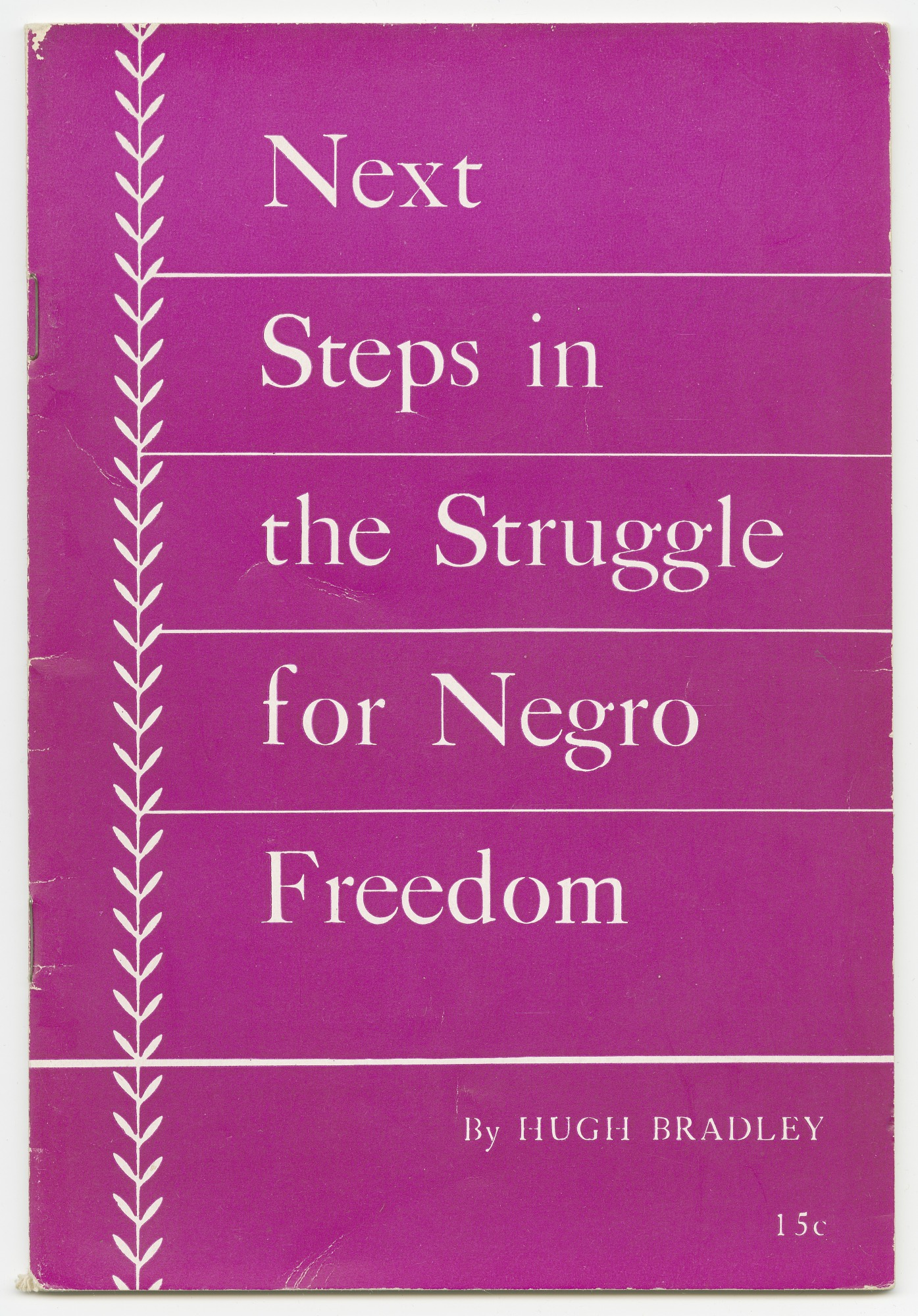 Image for Next Steps in the Struggle for Negro Freedom