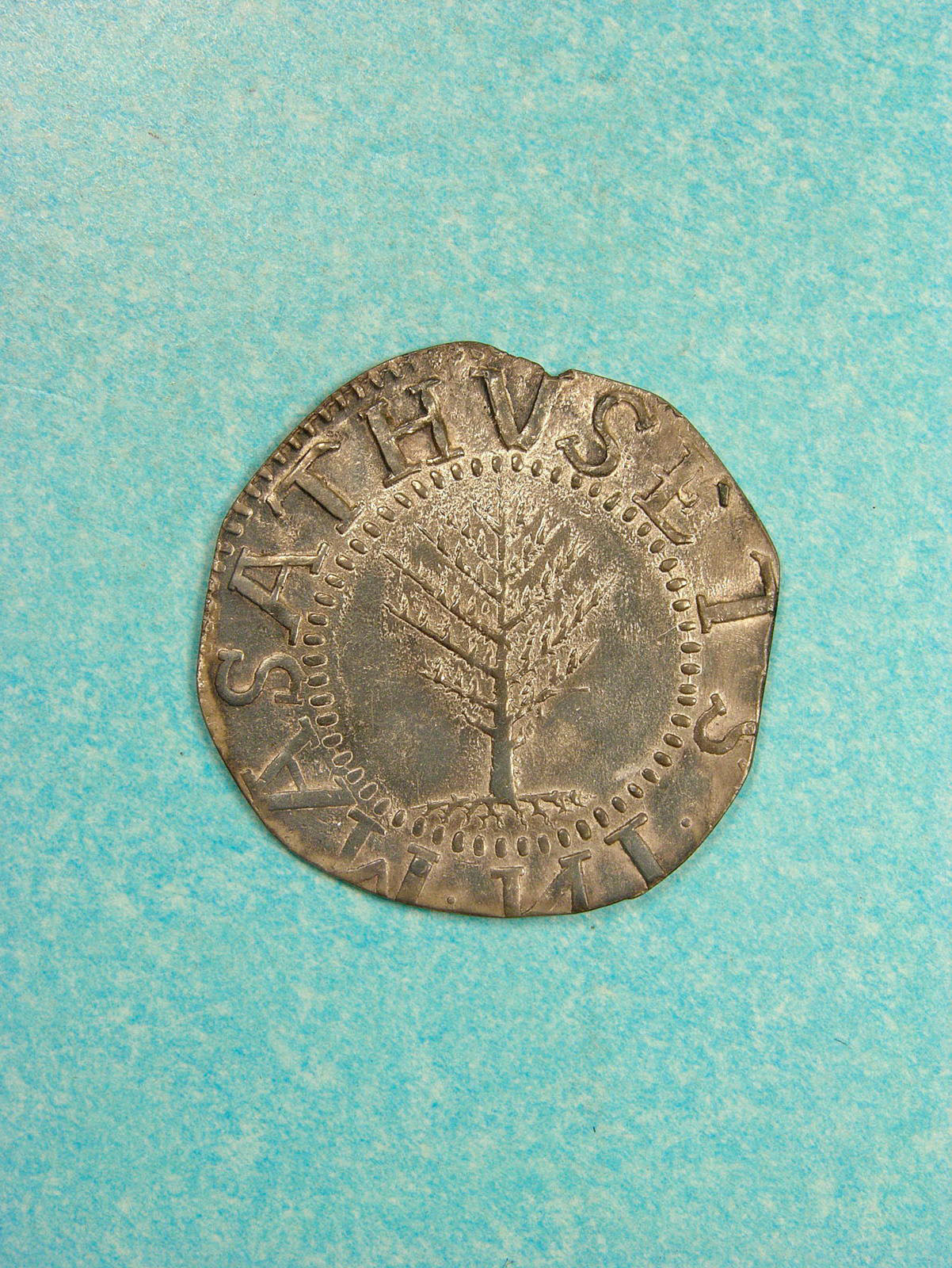 Silver coin with pine tree image