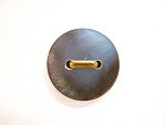 Shell Button with Gold Metal Shank Through Two Center Holes