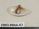 fishing fly embedded in acrylic