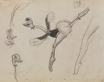 Character study of Mlle Upanova, the dancing ostrich, for the Disney animated film Fantasia
