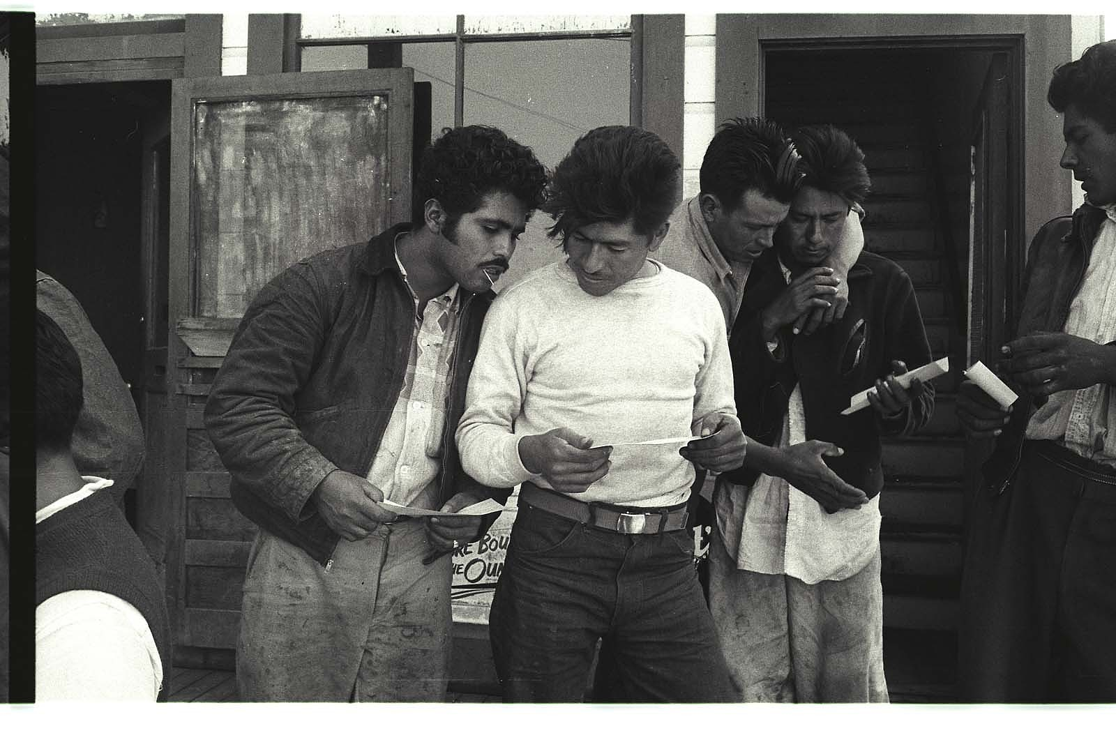 Braceros examine their paychecks outside of a building in Watsonville, California.