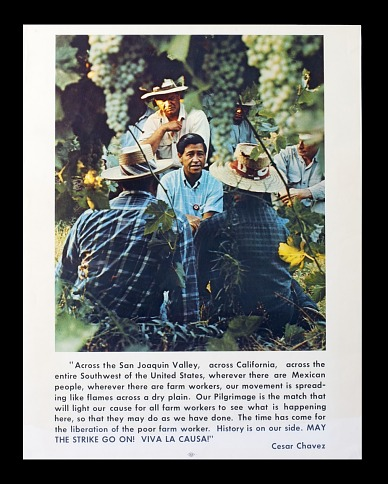 Poster, United Farm Workers