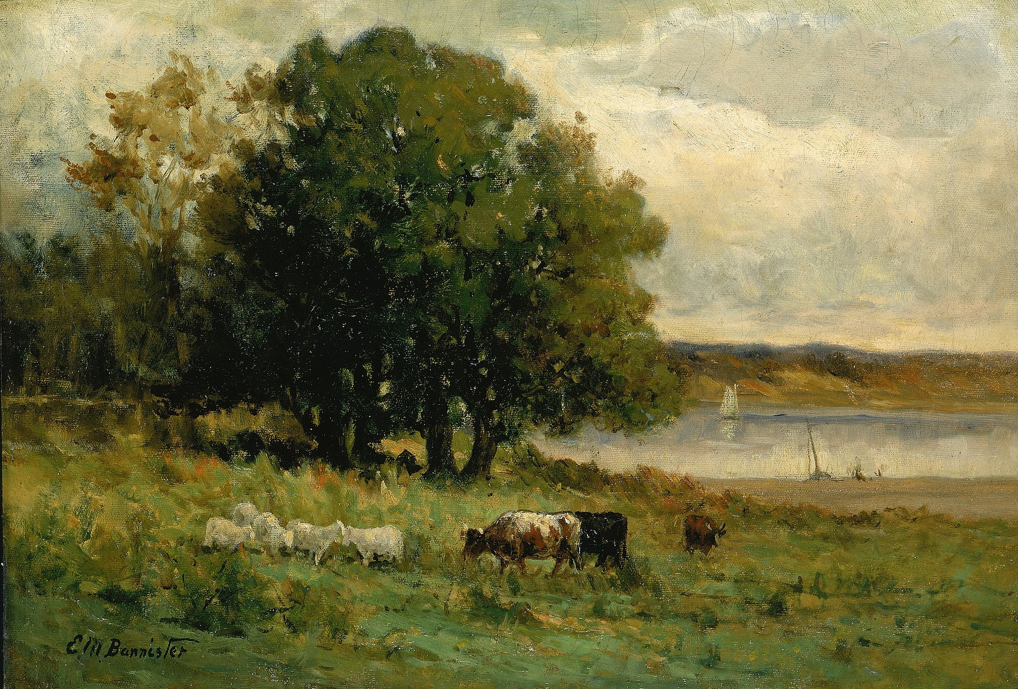Untitled (cattle near river with sailboat in distance)