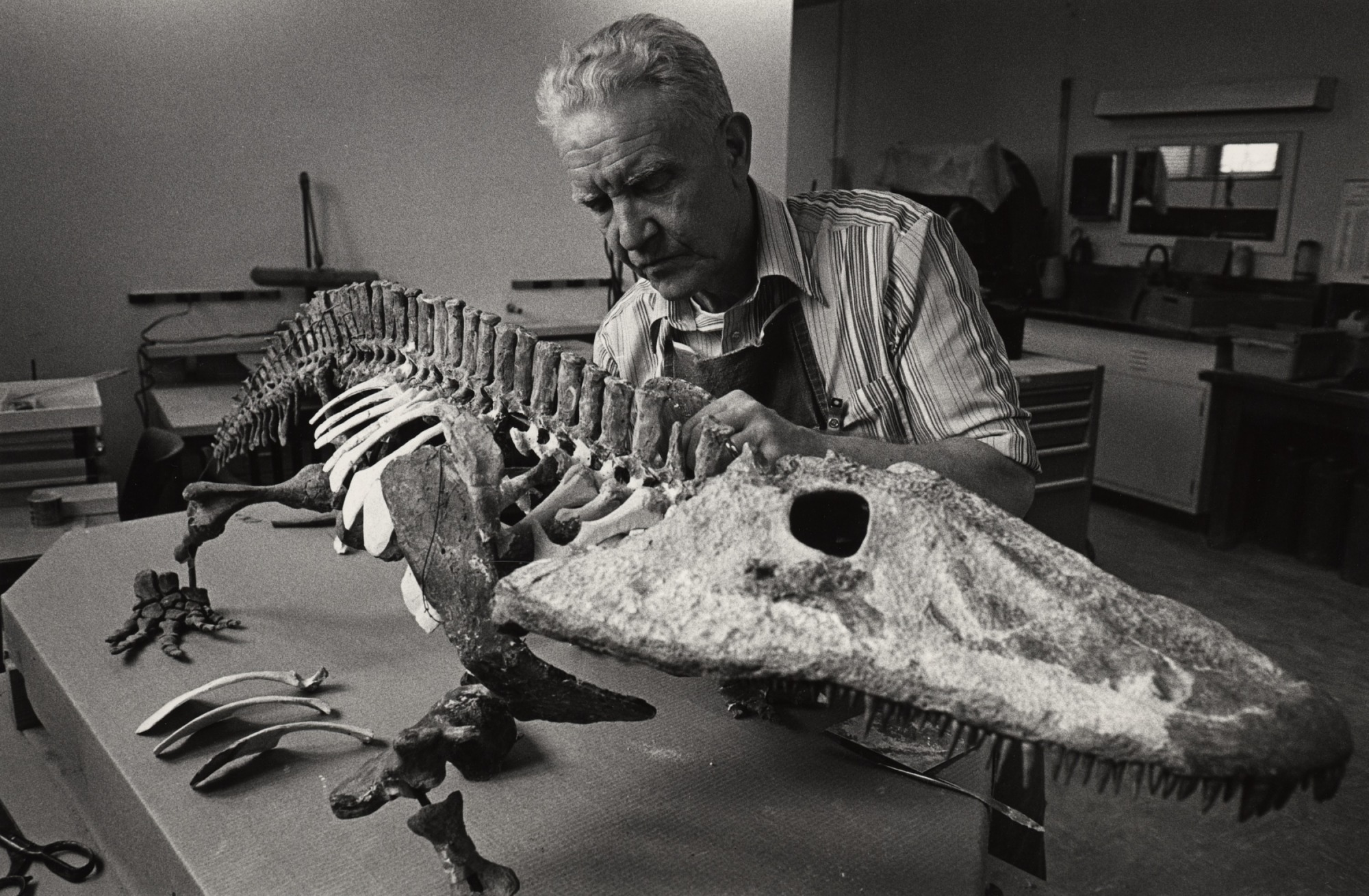 Leroy Glenn, Jr., at Work, by Clark, Chip, 1980, Smithsonian Archives - History Div, 2003-19501.