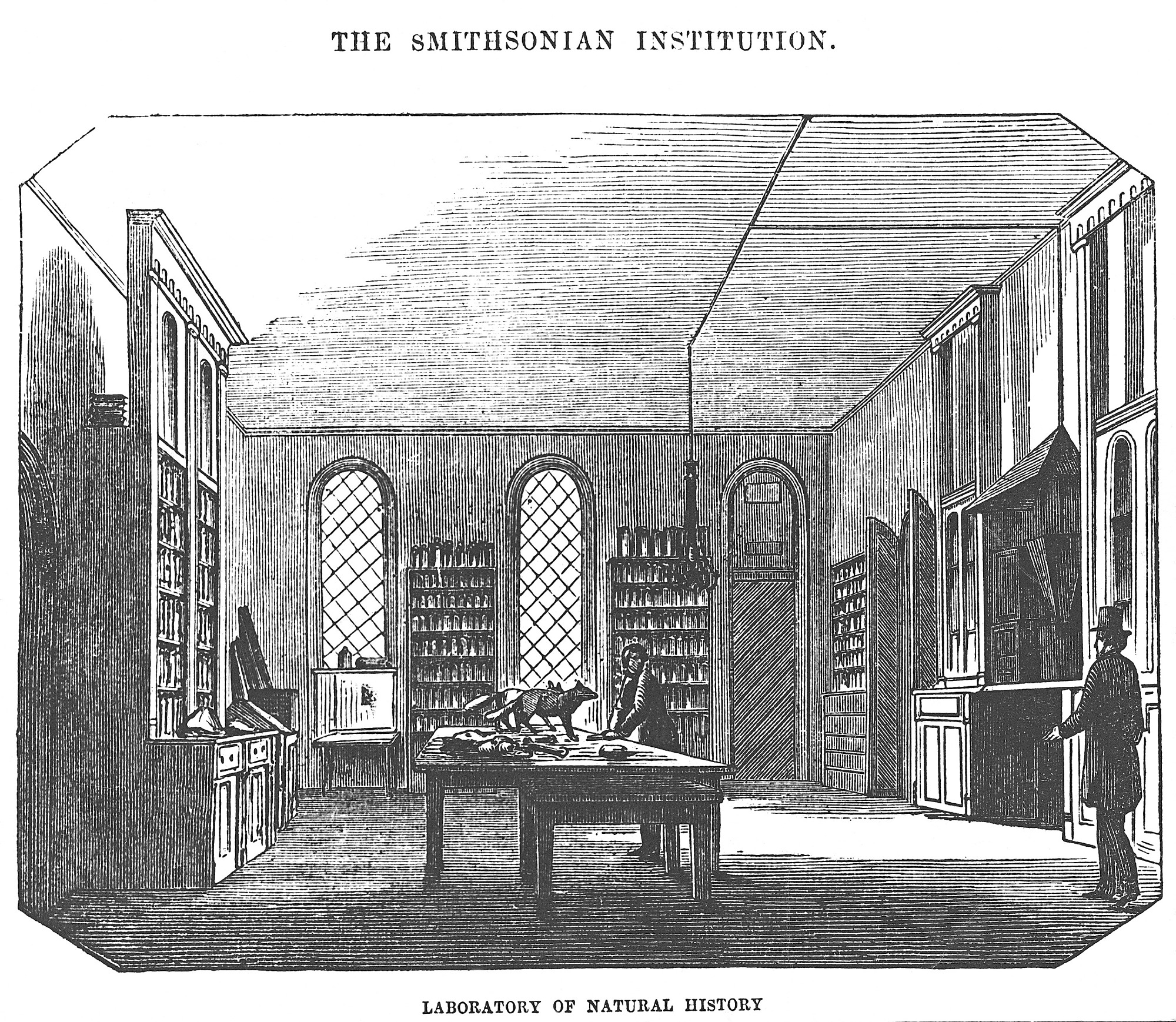 Image is of the Laboratory of Natural History in the East Wing of the Castle, c. 1856, Smithsonian Institution Archives, negative number 2005-10437.