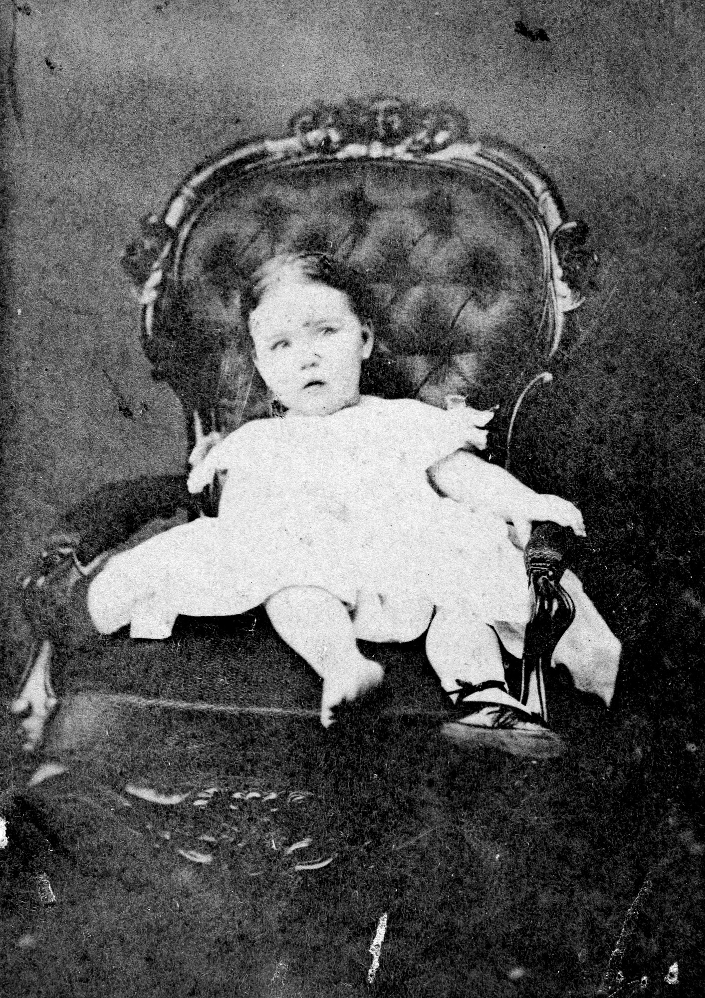 The image below is the of a young Caroline Henry. For additional images see Negative Numbers 46638-G and 2002-12181 in SIRIS (www.siris.si.edu for the History of Smithsonian catalog.