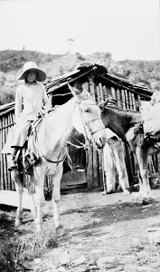 Image of Mary Agnes Chase Collecting Plants, Brazil
