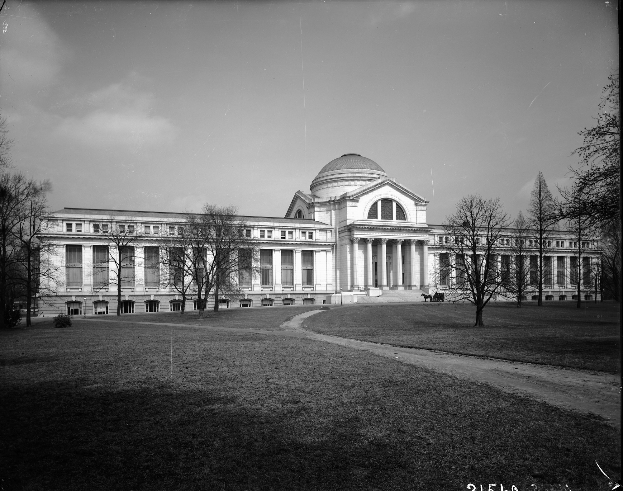 National Museum of Natural History, c 1911