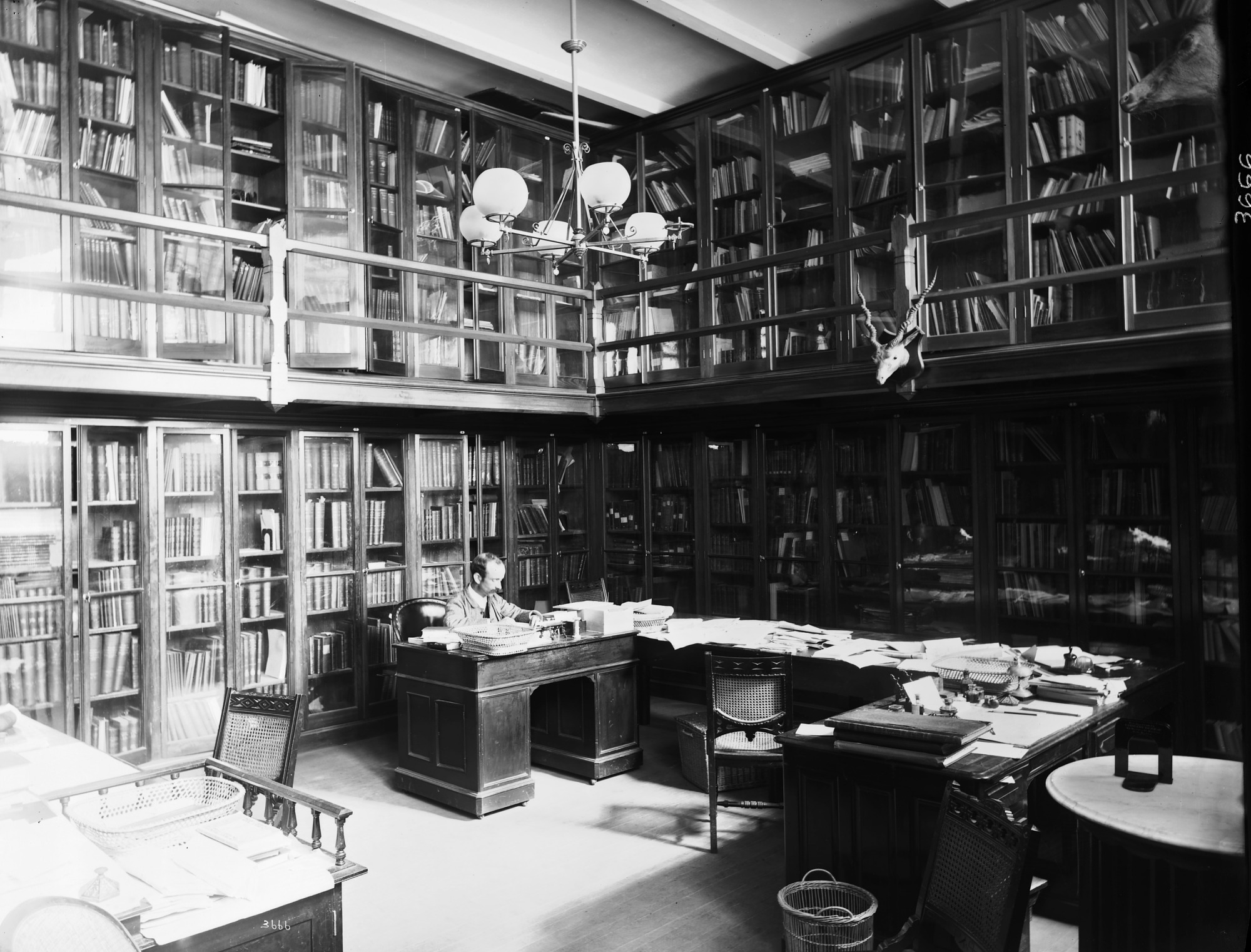 Library in United States National Museum Building