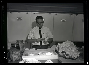 Image of Joseph Rosewater with Clam Shell Specimens