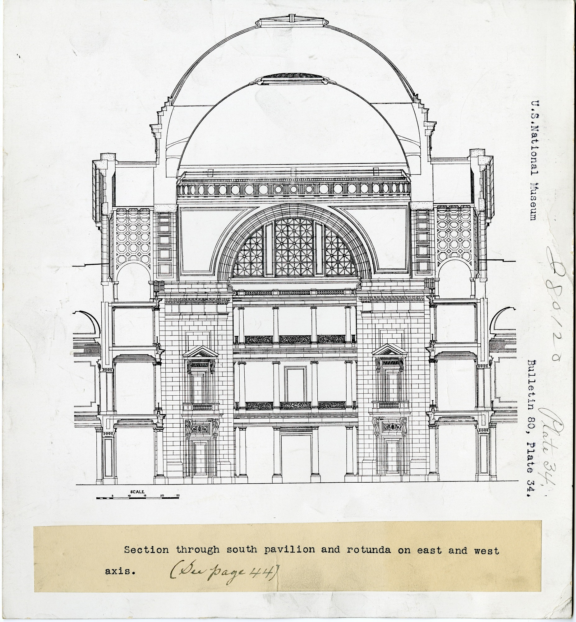 Preview of United States National Museum, Section through South Pavilion and Rotunda