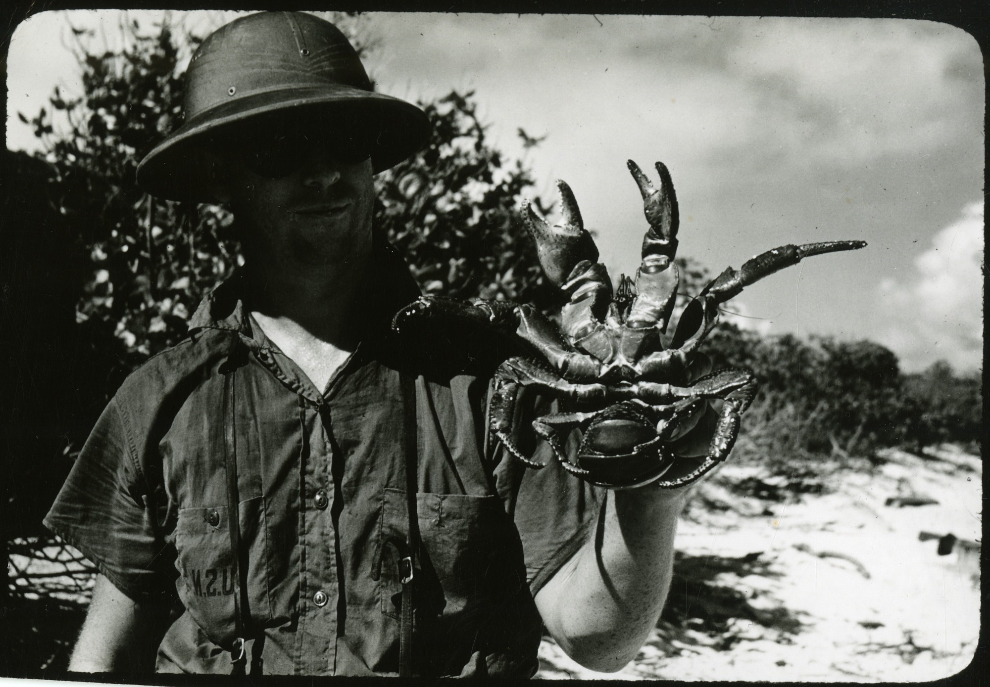 Preview of Dr. Robert Hiatt Holding a Coconut Crab