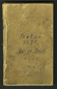 Image of Field notes, 1871