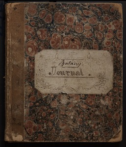 Image of Journal and photos