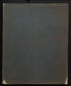 Image of Diaries and field notes, 1915 - 1972 (2)
