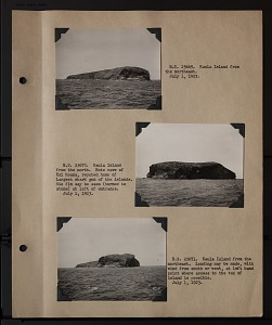 Image of Album 2 Pacific Islands, 1923 (Tanager Expedition), volume 1 : includes photographs of Wetmore, William G. Anderson, and Eric Schlemmer