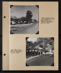 Image of Album 2 Africa, 1957 : includes photographs of Wetmore, Jean Theodore Delacour, Hoyes Lloyd, and Roger Tory Peterson