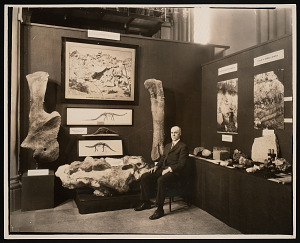 Image of Conference on the Future of the Smithsonian, Geology and Vertebrate Paleontology Exhibit