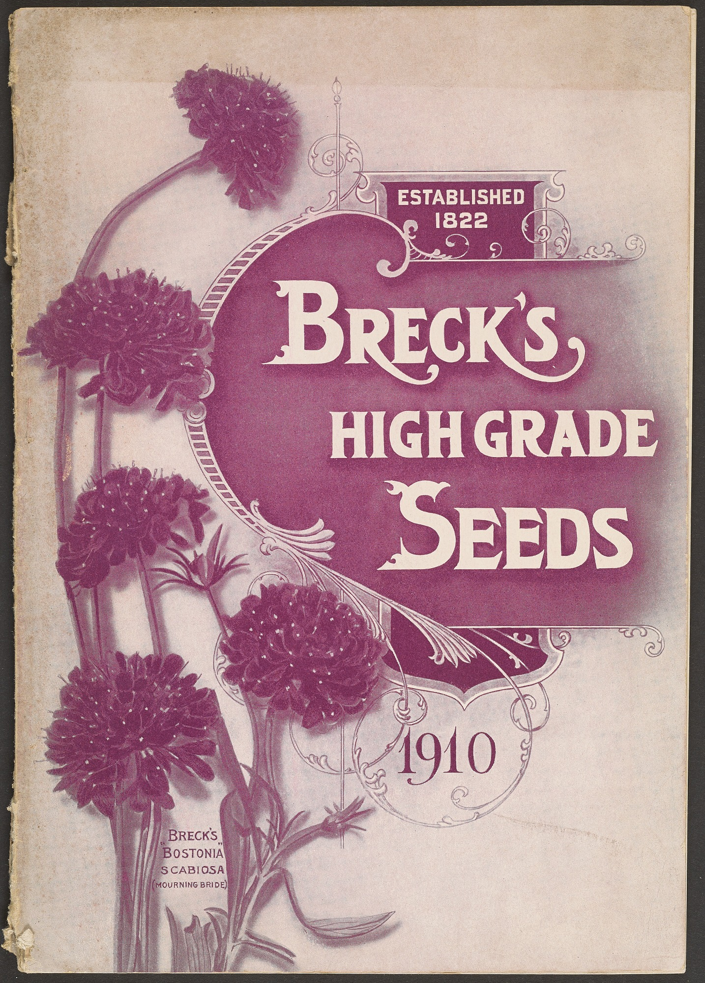Joseph Breck & Sons Corporation, Breck's High Grade Seeds, 1910