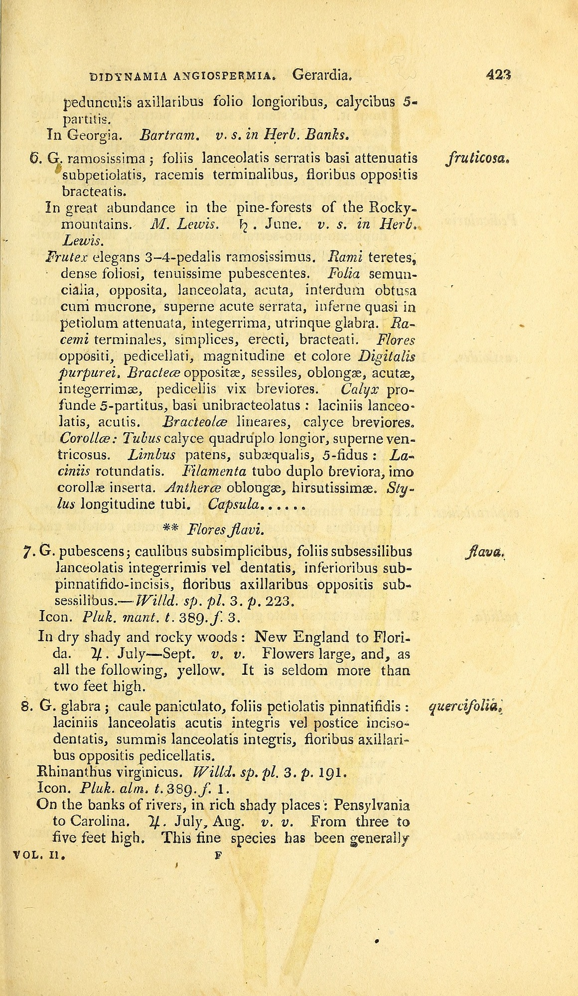 page 423 of Pursh's book with descriptions of several species of gerardia.