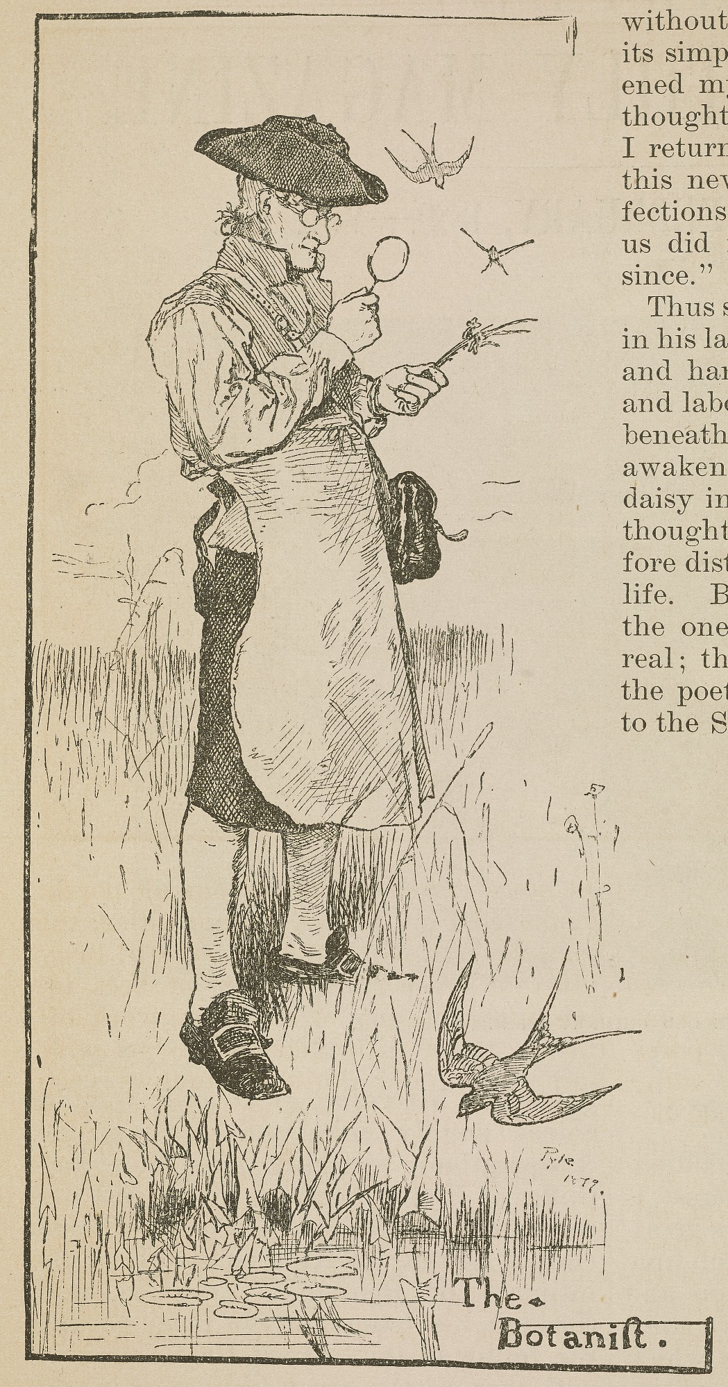 John Bartram, Illustration by Howard Pyle, published in Harper's New Monthly Magazine