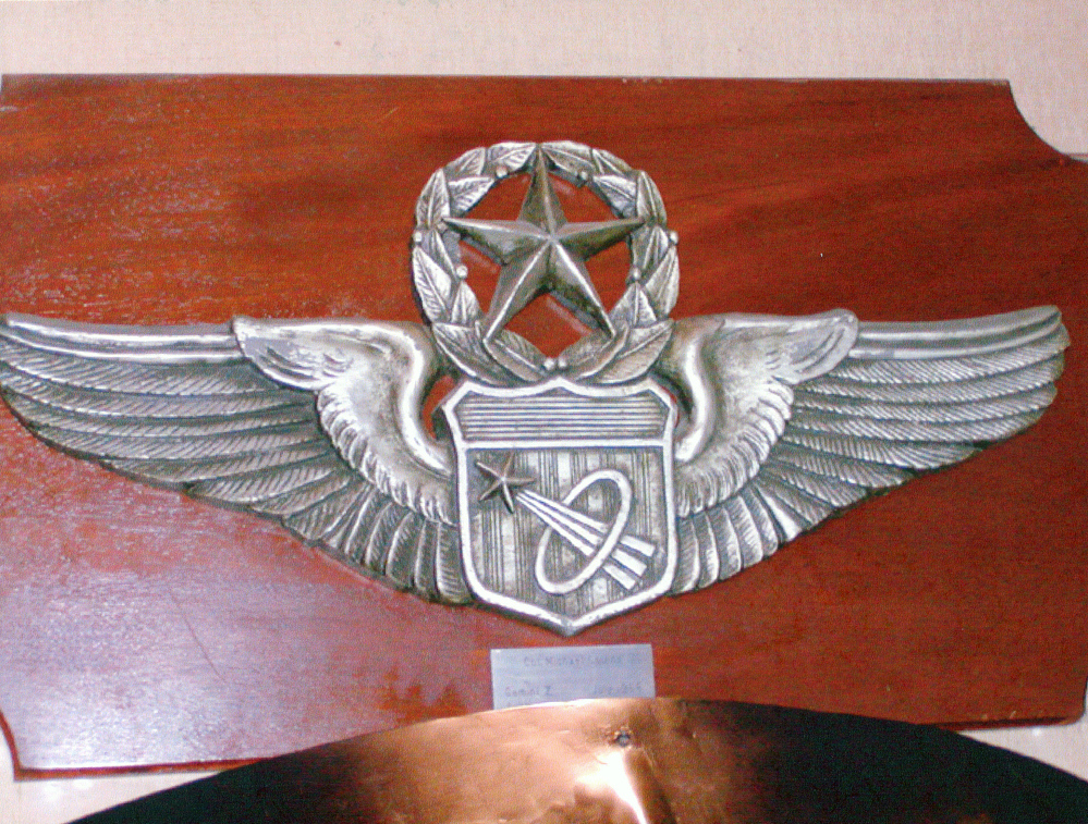 Plaque, Astronaut Wings