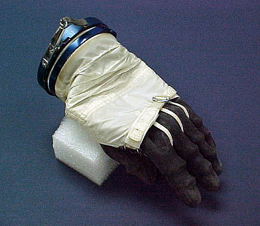 Glove, Space Suit, Dennis Tito, Left