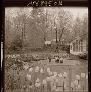Unidentified Garden No. 1 in Armonk, New York