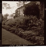 Unidentified Garden No. 2 in Armonk, New York