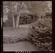 Unidentified Garden No. 3 in Armonk, New York