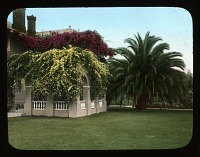 Unidentified Gardens in Pasadena, California