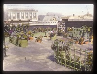 Unidentified Rooftop Garden in New York, New York