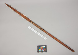 1 SHORT, WOODEN SPEAR WITH TWO ROWS OF SHARKS TEET...