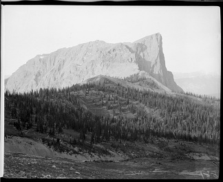881. View of the cliff of Mount Burgess from the west slope of Mount Field, three (3) miles north of