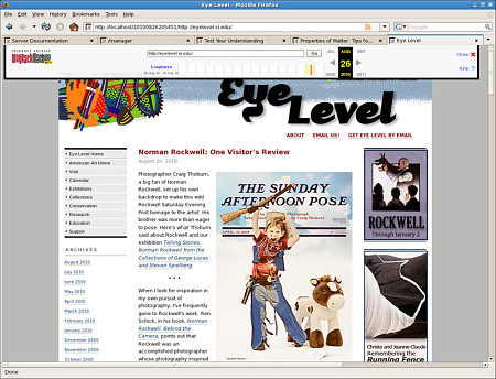 A screenshot of the American Art Museum's Eyelevel Blog as reviewed in Wayback.