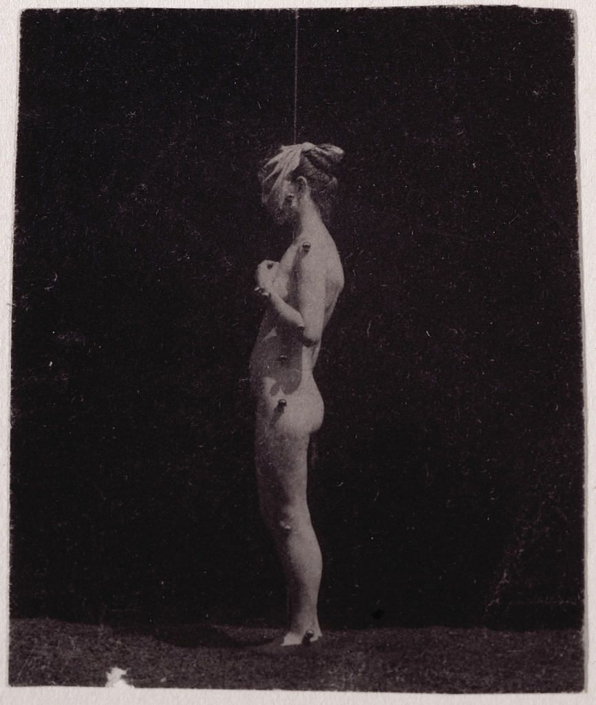 Unidentified Model by Thomas Eakins