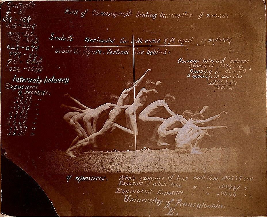 Marey Wheel Photographs of Unidentified Model, with Eadweard Muybridge Notations by Thomas Eakins
