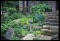 [Cairn House] [slide (photograph)]: herb and rock garden with birdbath,  Name: {