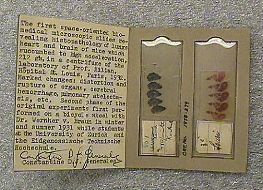 Biomedical Experiment, Microscope Slides