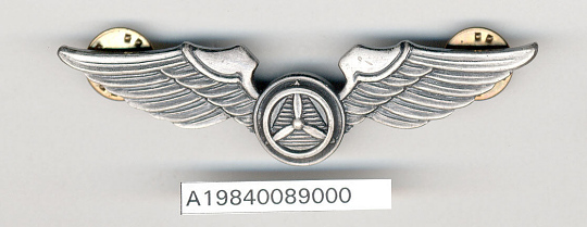 Badge, Pilot, Civil Air Patrol (CAP)